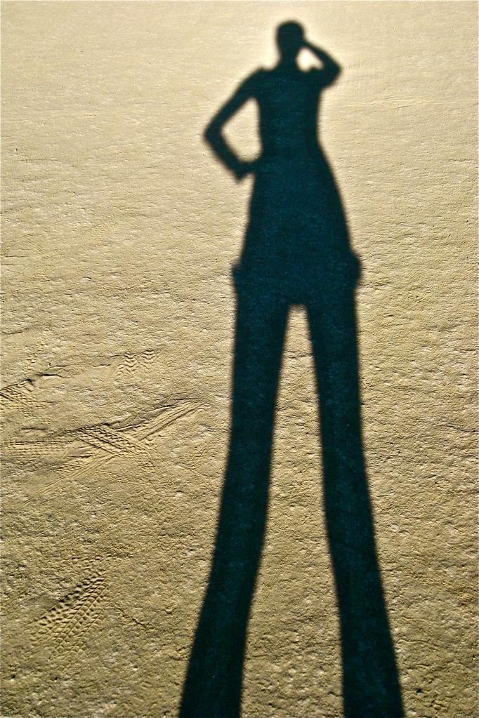 Chasquita's shadow at Burning Man.