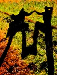 Dancing Shadows.