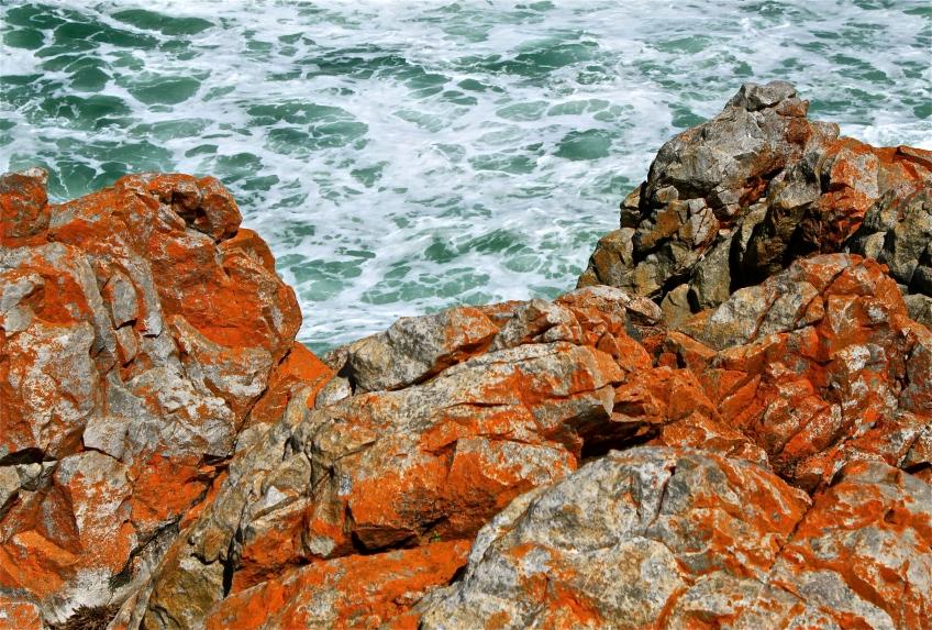 Ocean and rock.