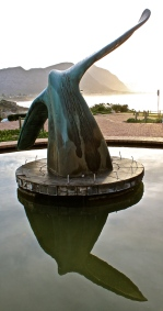 Whale tail statue in Hermanus.