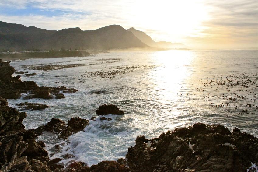 Sunrise in Hermanus, South Africa.