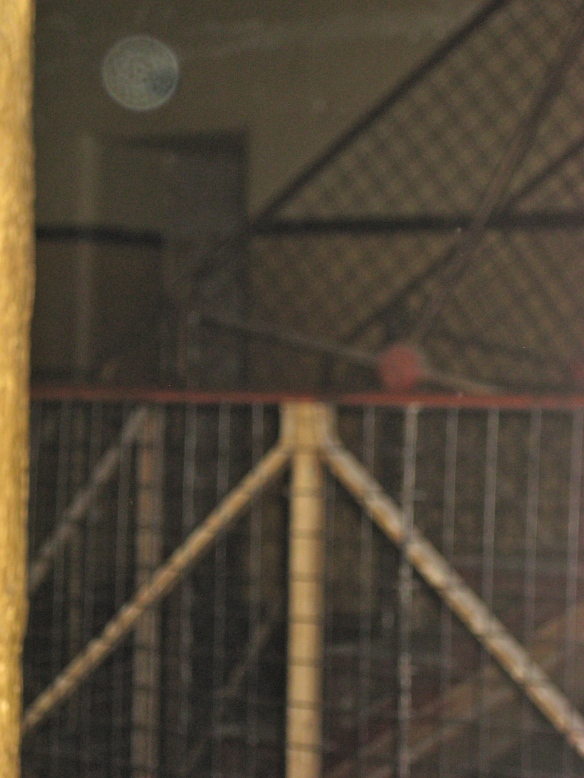 Eerie photo at Melbourne Gaol.